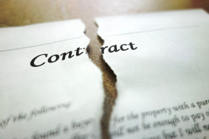 Torn legal contract - legal concept